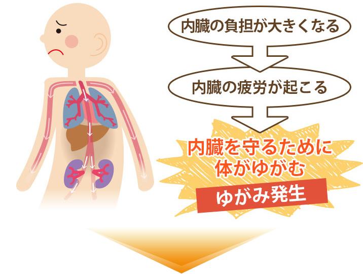 体が内臓をかばい姿勢が悪くなる